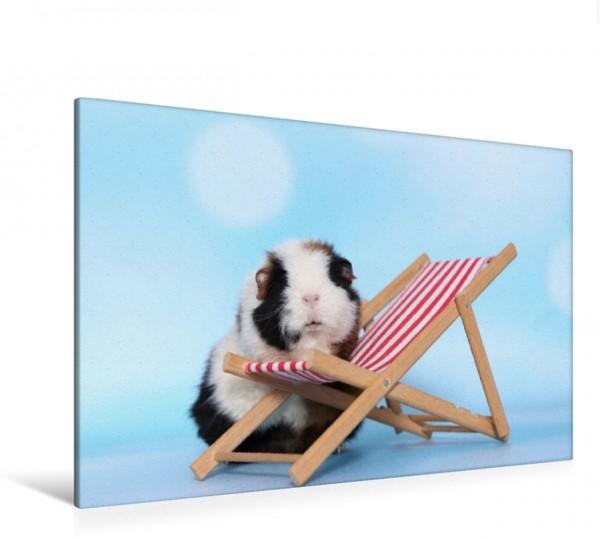 Wandbild Meerschweinchen
