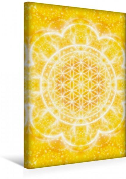 Wandbild Blume des Lebens - Lichtkraft Eines der beliebten Kunstwerke von Dolphins DreamDesign Eines der beliebten Kunstwerke von Dolphins DreamDesign