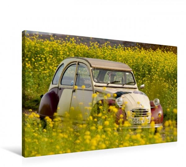 Wandbild Citroën 2 CV Dolly in Gelbsenf. Ente Ente