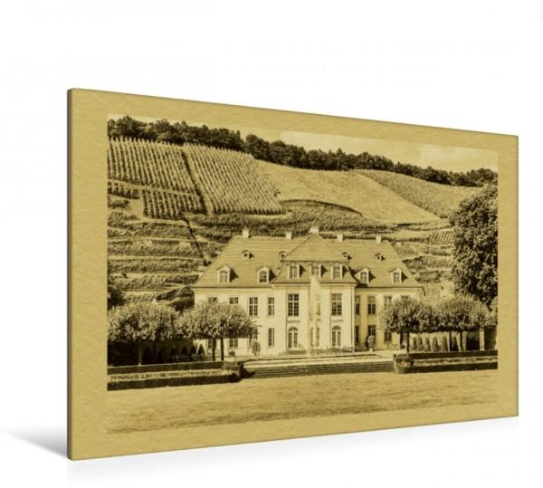 Wandbild Schloss Wackerbarth Radebeul Radebeul im Zeitungsstil Radebeul im Zeitungsstil