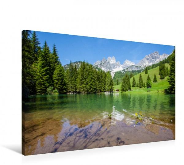 Wandbild Wald am Almsee in Filzmoos