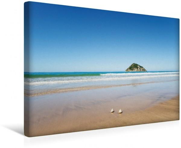 Wandbild Strand und türkises Meer Anaura Bay Neuseeland Leinwandbild