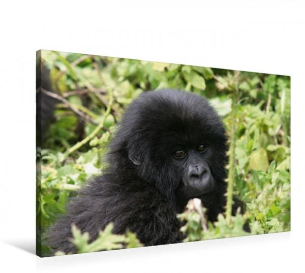 Wandbild Kleine Wilde - Tierkinder in Afrika