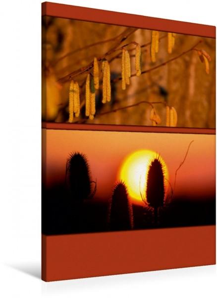 Wandbild Sonnenaufgang Farbtupferl der Natur Farbtupferl der Natur