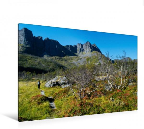 Wandbild Norwegen - Senja
