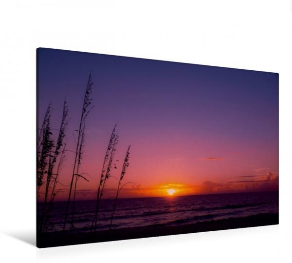 Wandbild FLORIDA Naples Beach Traumhafter Sonnenuntergang Traumhafter Sonnenuntergang