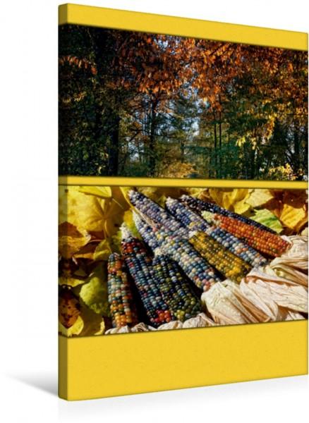Wandbild Herbst Farbtupferl der Natur Farbtupferl der Natur