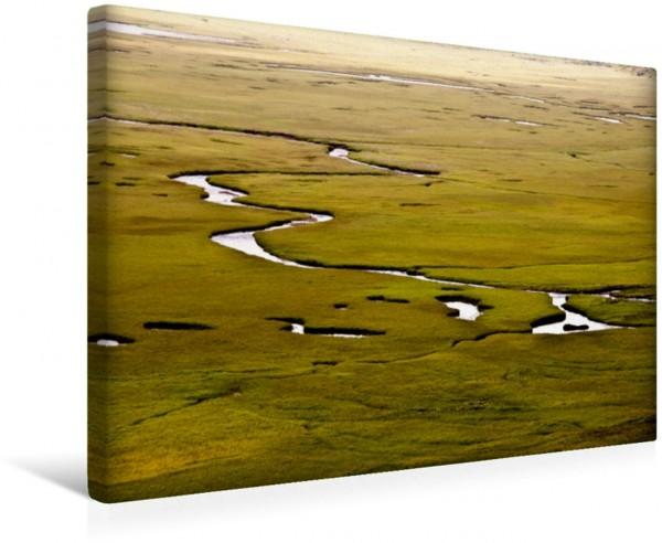 Wandbild Die grüne Weite - Islands Westfjorde Sumpfland Westfjorde Island Sumpfland Westfjorde Island