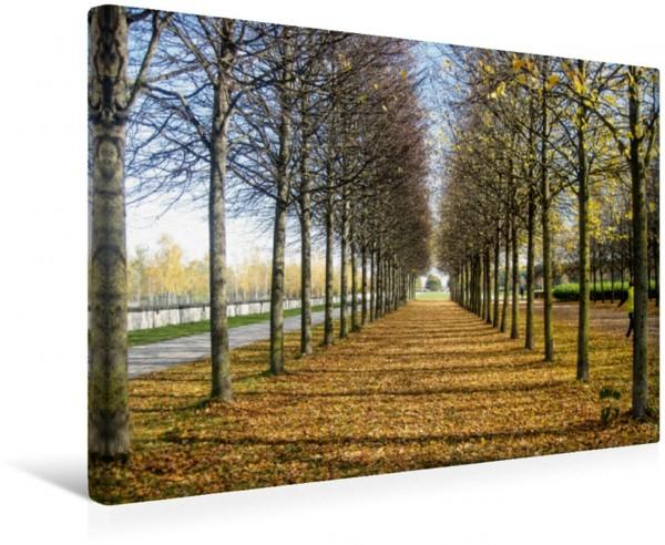 Wandbild Der Herbst ist da im Park