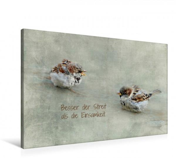 Wandbild Puschelige Spatzen und Irischer Segenswunsch Tierszene Tierszene