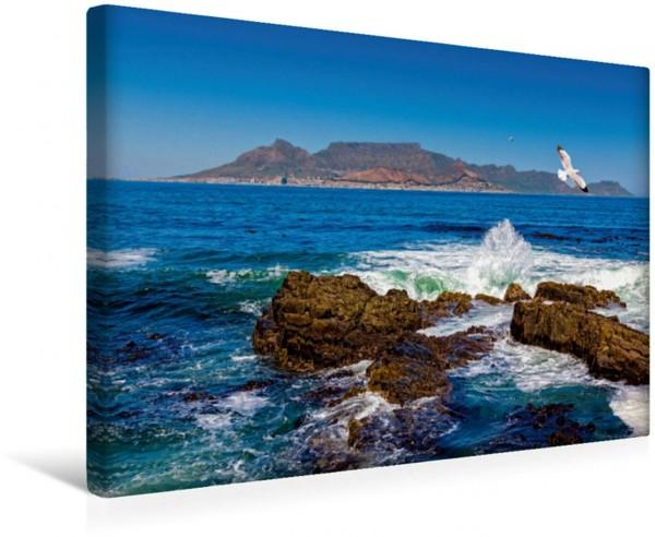 Wandbild Robben Island