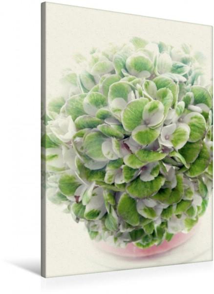 Wandbild Hortensienliebe in Pastell Geballte Sommererinnerung Geballte Sommererinnerung
