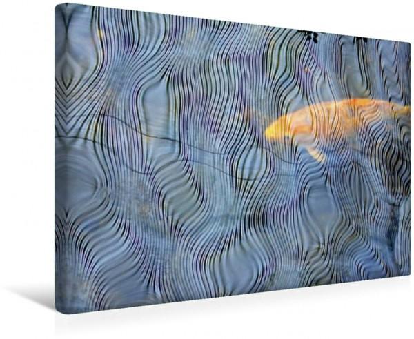 Wandbild Koi-Kunst – Regentropfen auf einem Koi-Teich Koi im Teich Koi im Teich
