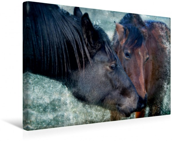 Wandbild Pferde zum Träumen