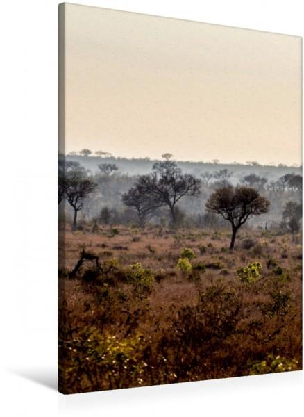 Wandbild Afrikanische Landschaft