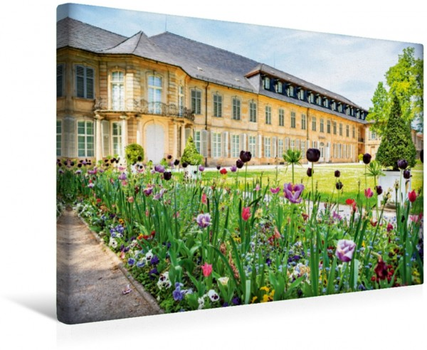 Wandbild Blumen vor dem Neuen Schloss Bayreuth
