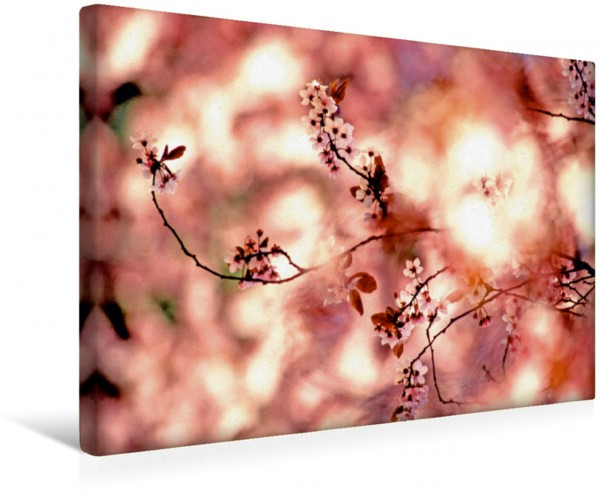 Wandbild Ceisier Blumen