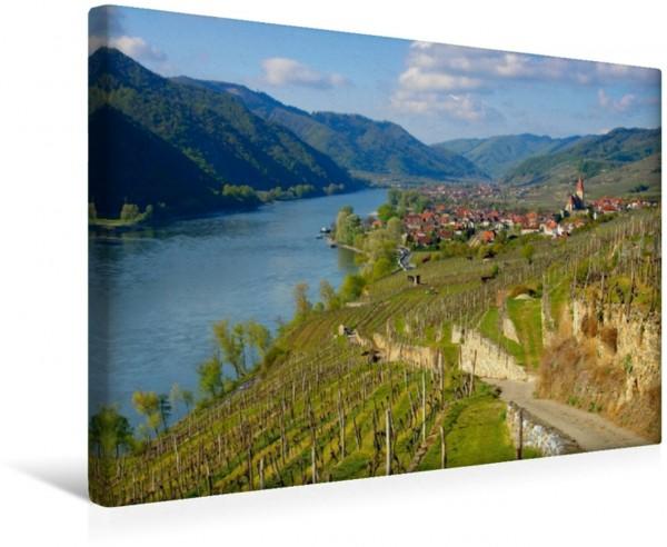 Wandbild Weinberge bei Weißenkirchen Die Wachau - An der Donau zwischen Melk und Krems Die Wachau - An der Donau zwischen Melk und Krems