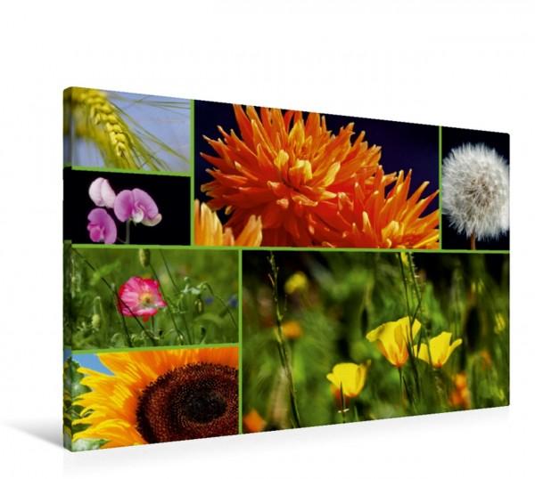 Wandbild Florales zu jeder Jahreszeit
