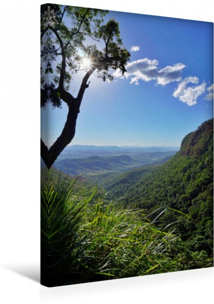 Wandbild Lamington Nationalpark