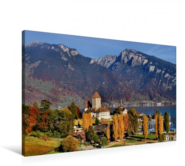 Wandbild Spiez, Berner Oberland, Schweiz