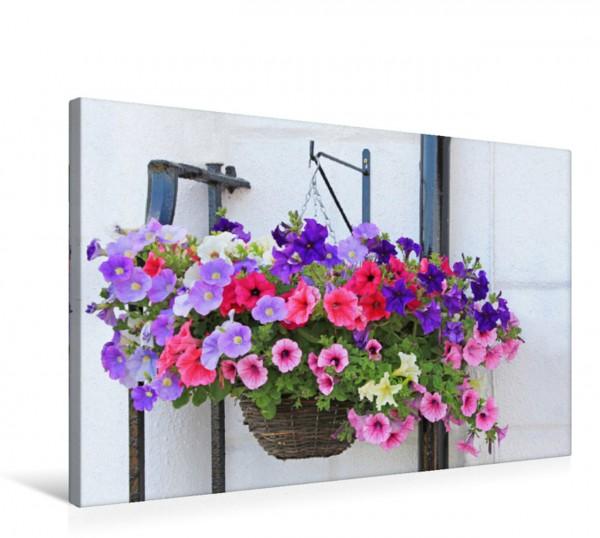 Wandbild Blumenampel mit Petunien Blumenampel mit bunten Petunien Blumenampel mit bunten Petunien