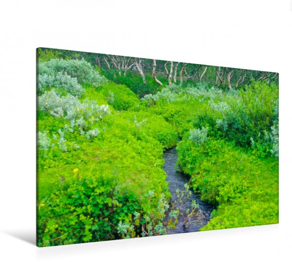 Wandbild Bachlauf im Jökulsárgljúfur-Nationalpark, Island Ein poetisches Foto von Wasser und wundervoller Landschaft mit Birken Ein poetisches Foto von Wasser und wundervoller Landschaft mit Birken