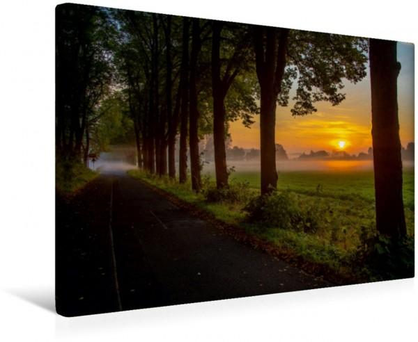 Wandbild Sonnenaufgang in Meerbusch Meerbusch-Büderich Meerbusch-Büderich