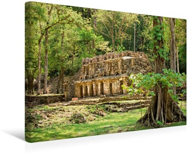Wandbild Eine geheimnisvolle Maya-Ruine mitten im Regenwald bei Yaxchilan Maya-Gebäude bei Yaxchilan Usumacinta Fluß Chiapas Mexiko Maya-Gebäude bei Yaxchilan Usumacinta Fluß Chiapas Mexiko