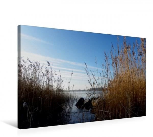 Wandbild Ufer bei Borgwedel