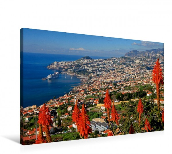 Wandbild Funchal