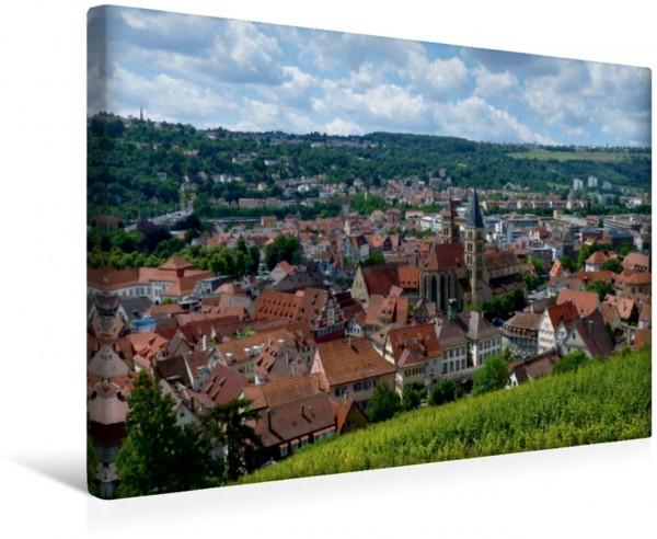 Wandbild Esslingen, Blick über die Weinberge auf die Altstadt