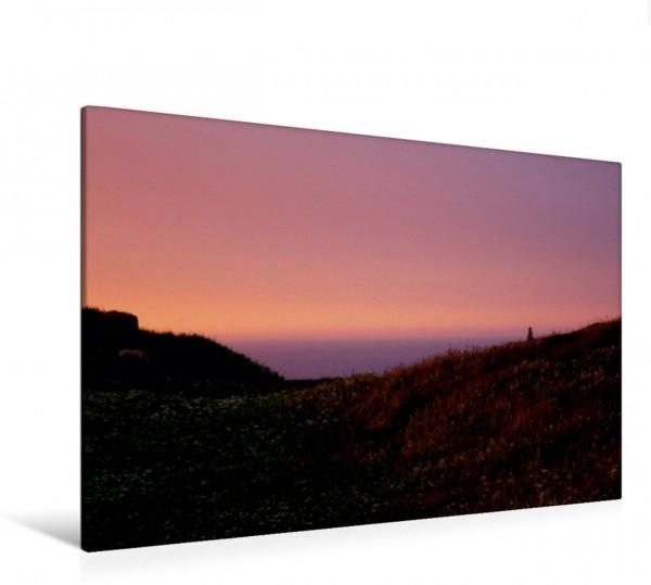 Wandbild Wiese auf Helgoland im Abendschein Nordsee Küste Nordsee Küste