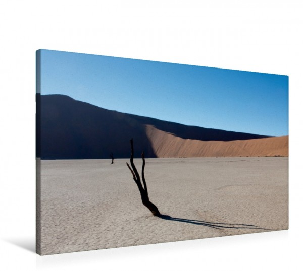 Wandbild Vertrocknete Bäume im Deadvlei, Namib Wüste