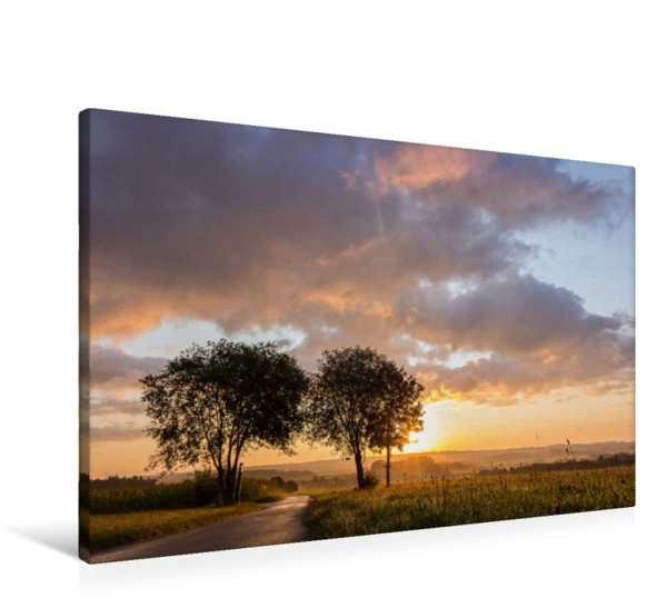 Wandbild Bärenwiesen am Morgen