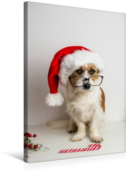 Wandbild Hund mit Weihnachtsmütze