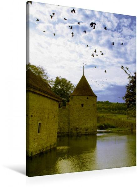Wandbild Schloss Hallwyl - Seengen - Schweiz