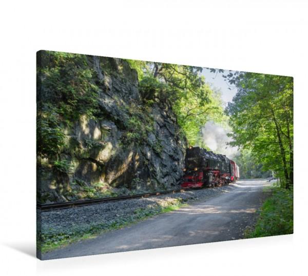 Wandbild Selketalbahn am Drahtzug